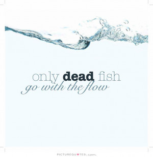 Fish quotes quotesgram for Only dead fish go with the flow