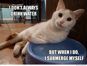 dont always drink water, but when I do I submerge myself – The ...