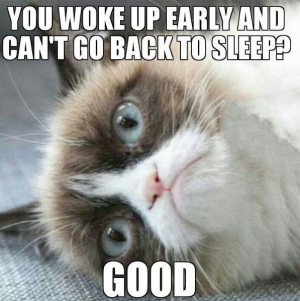 Funny Good Morning Grumpy Cat