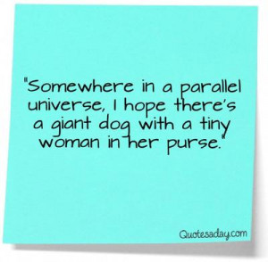 ... Universe, I Hope There's A Giant Dog With A Tiny Woman In Her Purse