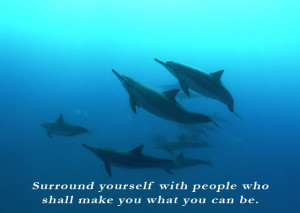 who shall make you what you can be. | Personal Transformation Quote ...