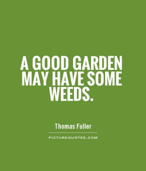Weeds Quotes Httpdigicamfotosdewp Contentbest Weed Tumblr Picture