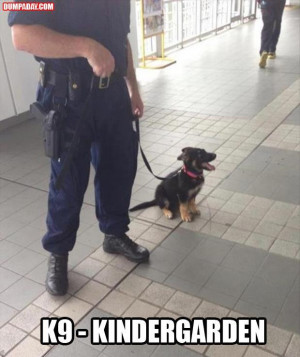 tagged with best of funny pictures , Funny Pictures , funny pictures ...