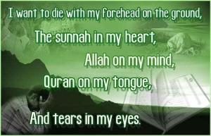 Inspirational Islamic Quotes: 4/25/10 - 5/2/10