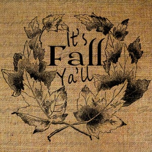 Its Fall Yall Cute Quote Leaf Leaves Autumn Harvest Thanksgiving ...