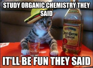 study organic chemistry they said itll be fun they said - tequila cat