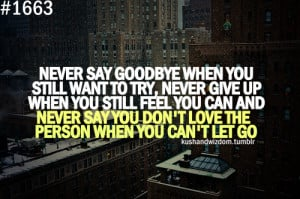 never-say-goodbye-when-you-still-want-to-trynever-give-up-when-you ...
