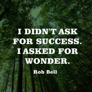 quotes-success-wonder-rob-bell-480x480.jpg