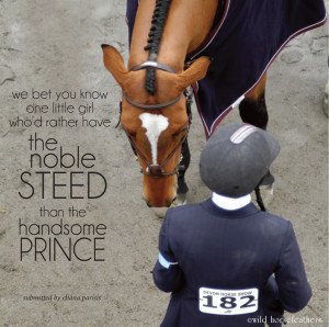 we bet you know one little girl who'd rather have the noble steed than ...