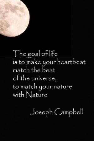 Joseph Campbell #quotation