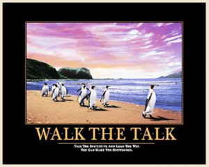 Walk The Talk Penguins