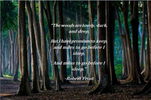 The woods are lovely…