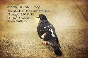 Bird Quotes About Life
