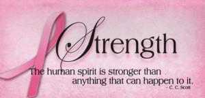 ... Breast Cancer Awareness Inspirational Pocket Planner 2013-2014