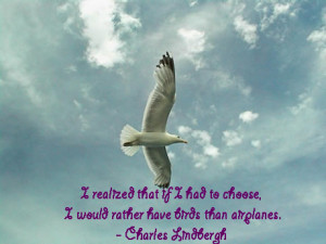 larry bird quotes bird quotes phoenix bird quotes big bird quotes bird ...