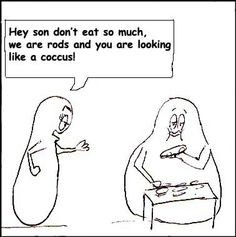 Microbiology humor ..shapes More