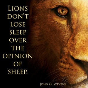 ... tags for this image include: lion, lose, opinion, quote and sheep