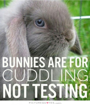 Animal Rights Quotes Rabbit Quotes