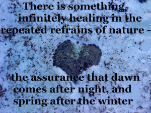The healing powers of nature quote, Rachel Carson