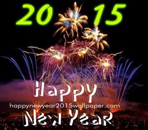 New Year Quotes 2015 ~ New Year 2015 Shayari Collection in Hindi ...