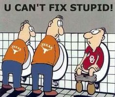 you can t fix stupid quotes sports funny stuff legs humor chicago ...