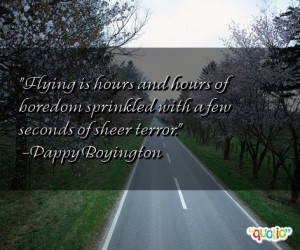 Flying is hours and hours of boredom sprinkled with a few seconds of ...