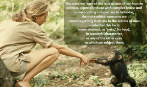 These Amazing Quotes About Animals and Nature Prove Jane Goodall is ...