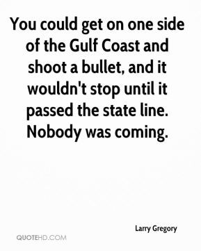 You could get on one side of the Gulf Coast and shoot a bullet, and it ...