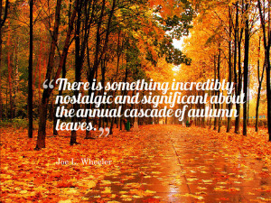 10 of My Favorite Fall Quotes | Quoty