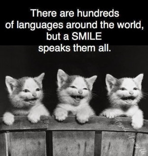 ... Keywords- Quotes on Smile, Sayings on Future, Motivational Writings