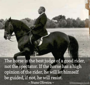 The #horse is the best judge of a good rider.