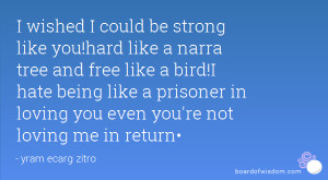 quotes about being free like a bird