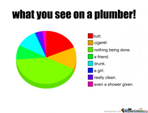 Yep This Is Wat You See (No Affence Plumber Girls)