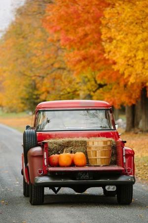 Season Autumn!