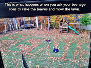 funny-picture-lawn-leaves-teenagers-mowing