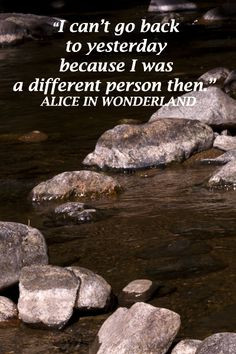 The Journey, New Journey Quotes, Alice On Wonderland Quotes, Alice In ...