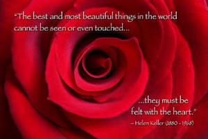 Red Rose with Helen Keller Quote - My Vision