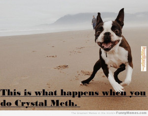 Funny memes – [When you do Crystal Meth]
