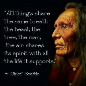 quotes from Chief Seattle.♥ Things Shared, Life, Inspiration, Quotes ...
