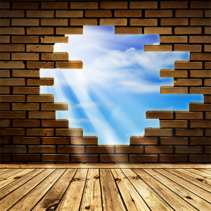 leadership roles to get your team walking through brick walls