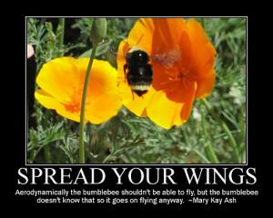 bumble bee - inspiration motivation motivationalposters teacher quotes ...