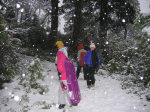 Playingin Snow Near The House