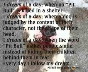 Inspirational pit bull pictures and sayings. (Facebook.com)