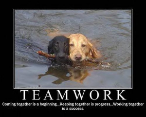 funny inspirational teamwork quotes