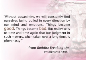 Without equanimity, we will constantly find ourselves being pulled in ...