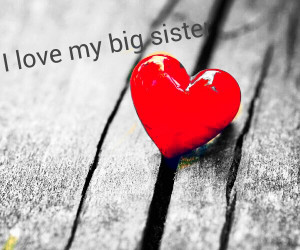 Love My Big Sister Quotes I Love My Big Sister