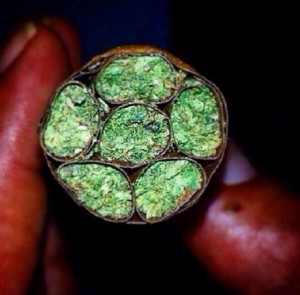 Blunts within a blunt… Bluntception.
