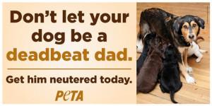 Deadbeat Dad Jokes Dog be a deadbeat dad.