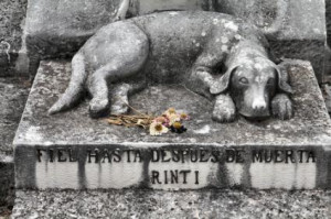 dogs in heaven by earl hammer jr the house dog s grave by robinson ...