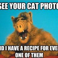 alf-eat-cats-food-pic.jpg